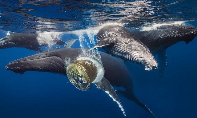 В выходные дни киты подняли биткоин до 9 000 долларов